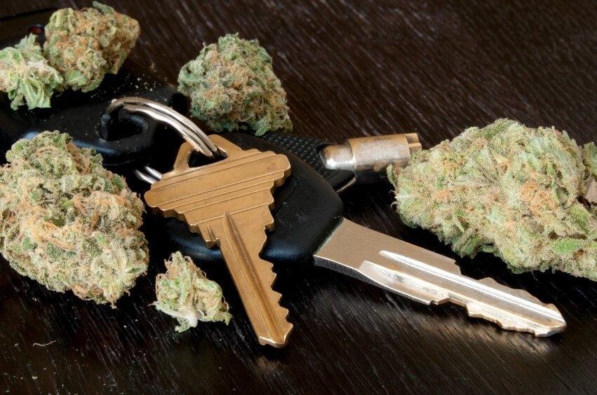 cannabis-dui-finland.jpg