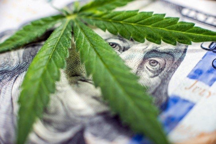 cannabis dollars.jpeg