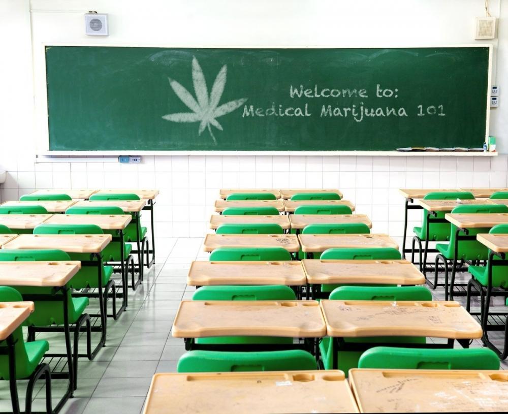 cannabis-at-school.jpg