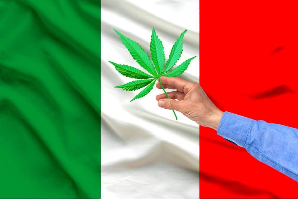 Италия и марихуана листок конопли схема
