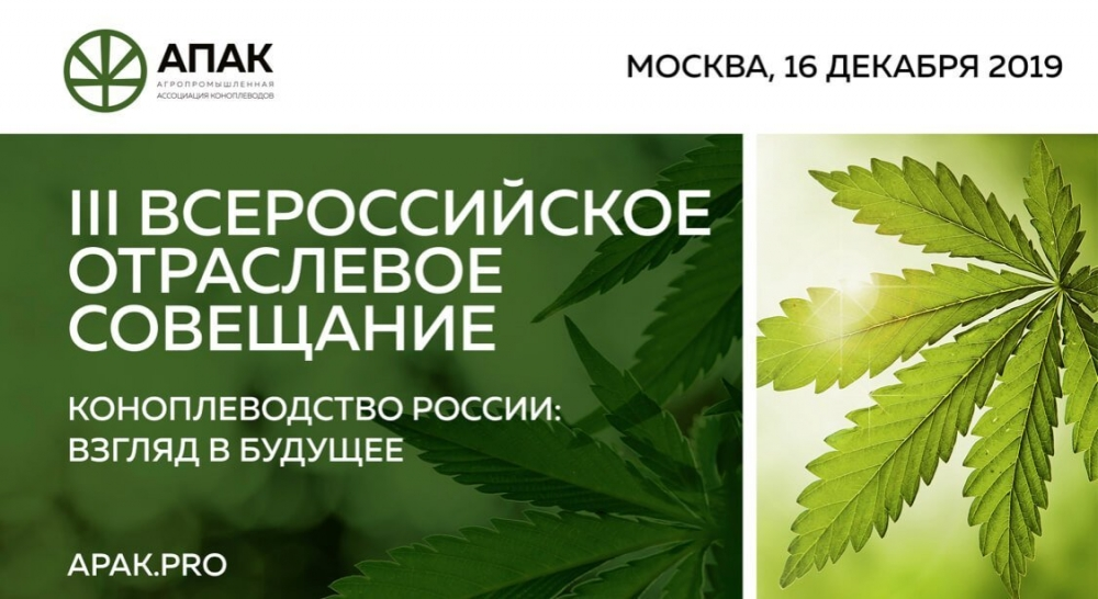 ru-cannabis-2019 (1).jpeg