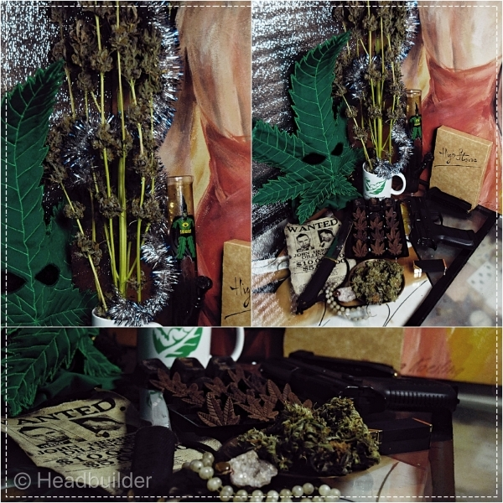 Collage_FotorHS420.thumb.jpg.a0e45ab37eeb5fc9d773714eb7553312.jpg