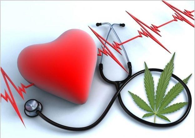 cannabis-cardiovascular-drugs.jpg