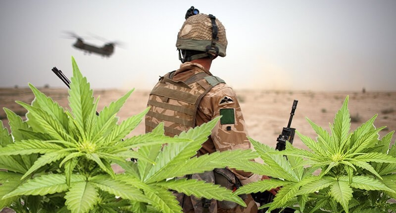 cannabis-ptsd(1).jpg