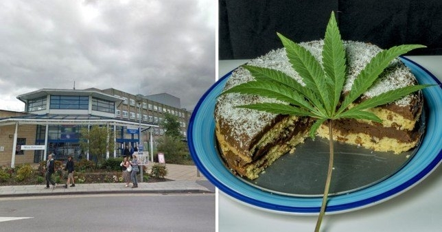 cake-cannabis-canada.jpg