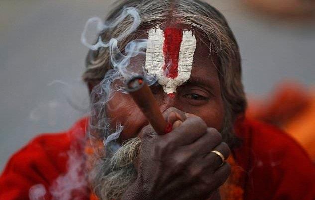 cannabis-hindu.jpg