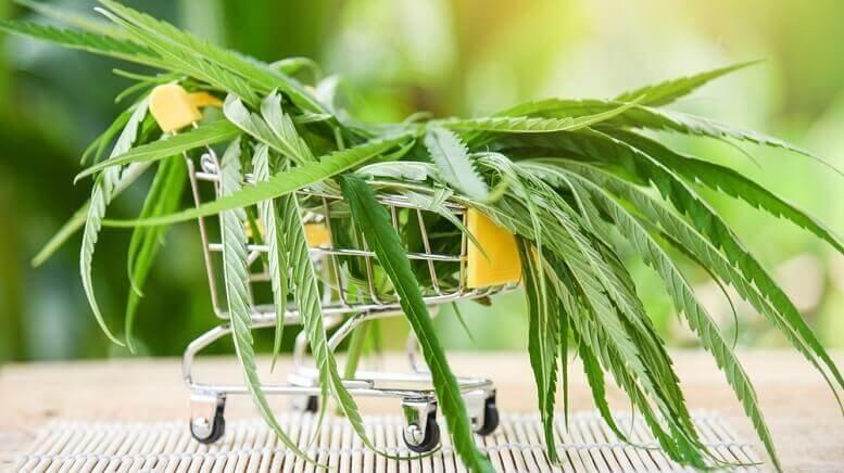 cannabis-sales-online-rise(1).jpg