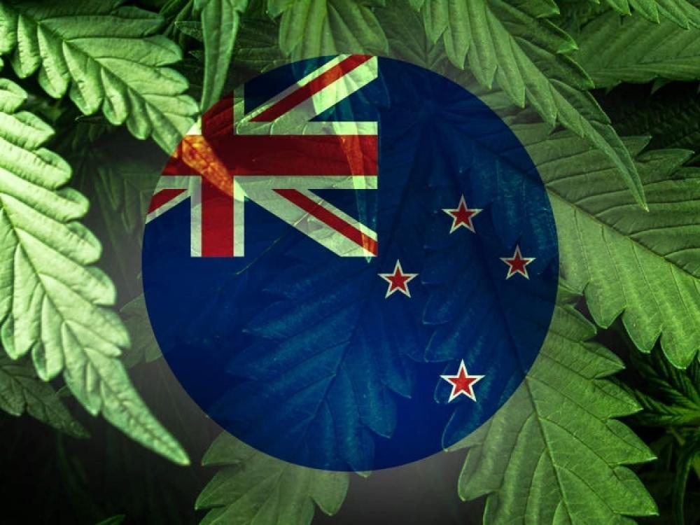 cannabis-final-draft-nz.jpg