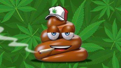 cannabis-poo-test(1).jpg