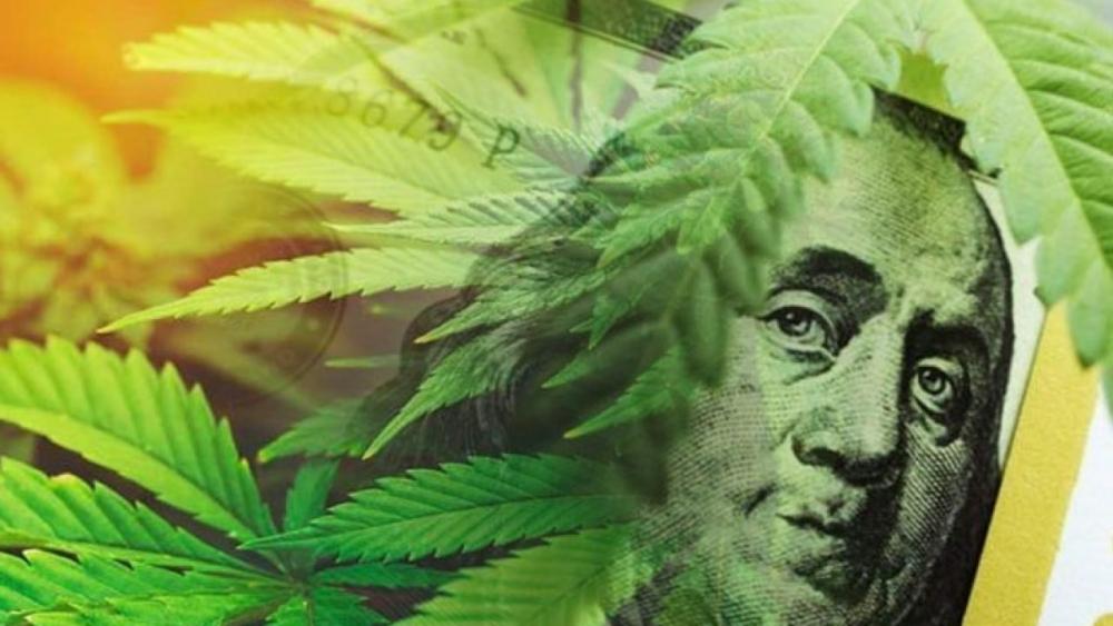 cannabis-sales-bosov.jpg