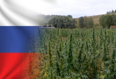 cannabis-teen-use-russia.jpg