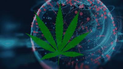 cannabis-blockchain-app(1).png