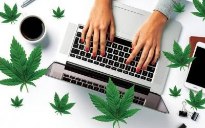 cannabis-online-courses(1).jpg