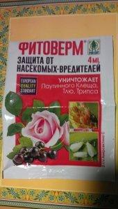 tmp-cam--1213660256.thumb.jpg.96193e8ef7bc74dd47a71a7833100eef.jpg