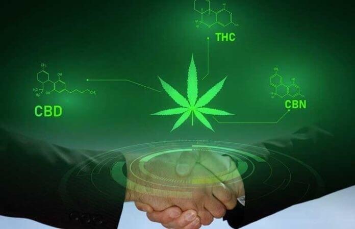 cannabis-blockchain-work(1).jpg