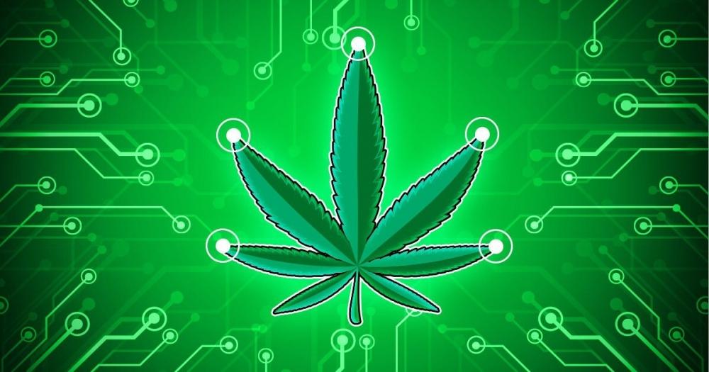 cannabis-ceres-coin(1).jpg