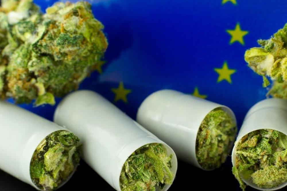 cannabis-eu-covid.jpg