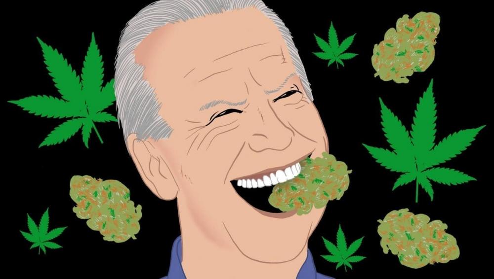 cannabis-joe-biden(1).jpeg