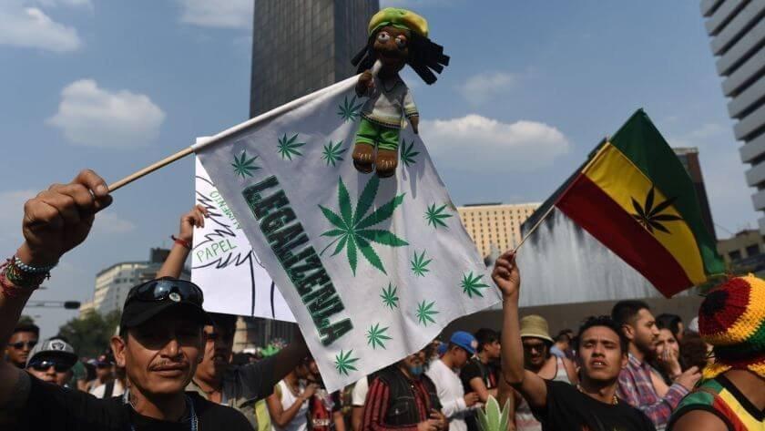 mexico-cannabis-activists(1).jpg