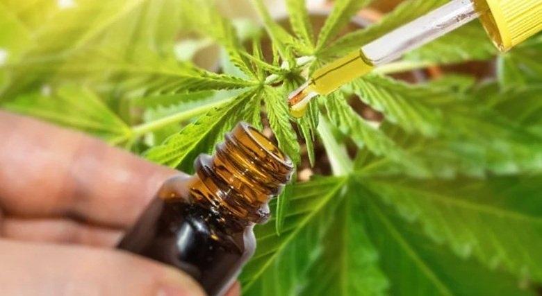 medcan-oil.jpg