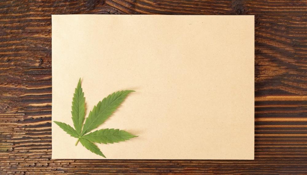 cannabis-cellulose-penza.jpg
