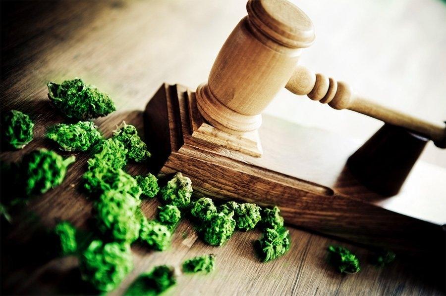 cannabis-high-court.jpg