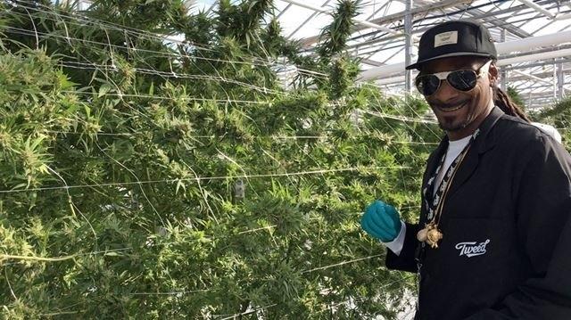 snoop-dogg-cannabis-grow.jpg