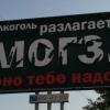 damir16