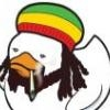 rasta_duck